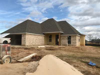 Brandon Single Family Home Contingent/Pending: 649 Conti Dr