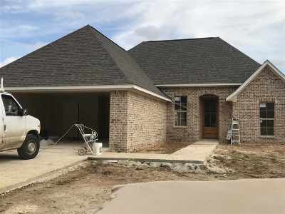 Brandon Single Family Home Contingent/Pending: 651 Conti Dr