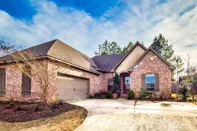 Rankin County Single Family Home Contingent/Pending: 533 Willow Valley Cir