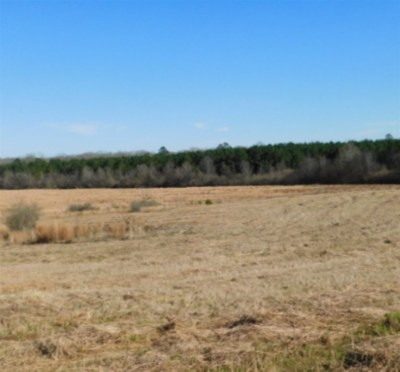 Rankin County Residential Lots & Land For Sale: Jerusalem Church Rd