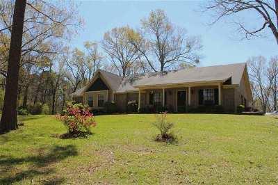 Hinds County Single Family Home For Sale: 7155B Jackson-Raymond Rd