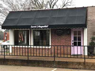 Leake County Commercial For Sale: 115 S Pearl St