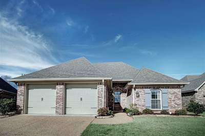 Rankin County Single Family Home For Sale: 508 Westpark Ct.