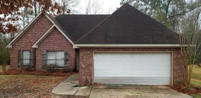 Byram Single Family Home For Sale: 3130 Tynes Dr