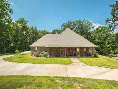 Clinton Single Family Home For Sale: 103 Skyline Cv