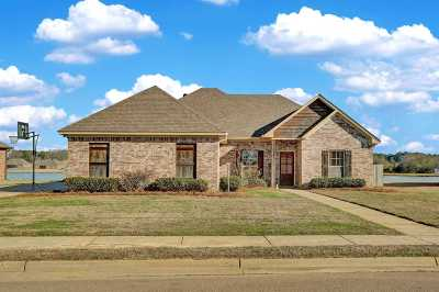 Hinds County, Madison County, Rankin County Single Family Home For Sale: 122 Lakeway Dr