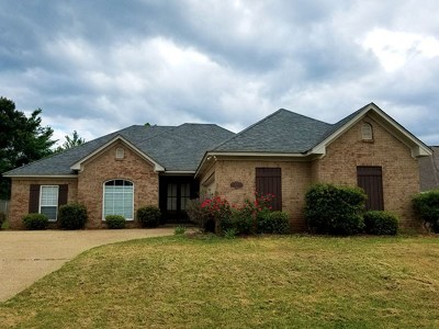 Rankin County Single Family Home For Sale: 314 Turtle Hollow