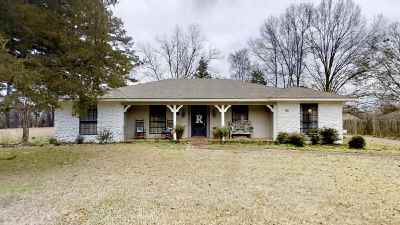 Pearl Single Family Home For Sale: 113 Fairview Cir