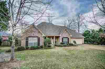 Hinds County Single Family Home For Sale: 113 Ellicot Burn Dr