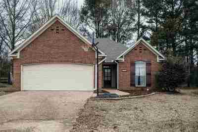 Hinds County Single Family Home For Sale: 125 Cowles Creek Rd