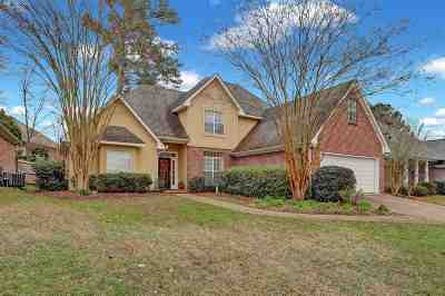 Rankin County Single Family Home For Sale: 115 Apple Blossom Dr