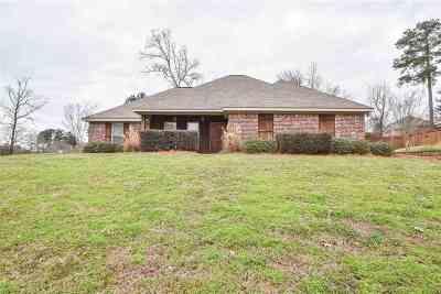 Brandon Single Family Home For Sale: 513 Glensview Dr