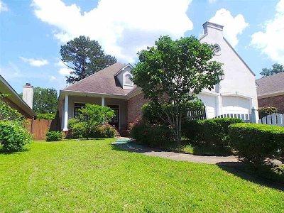 Ridgeland Single Family Home For Sale: 304 Colony Ridge Ct