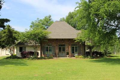Madison Single Family Home Contingent/Pending: 142 Munich Dr