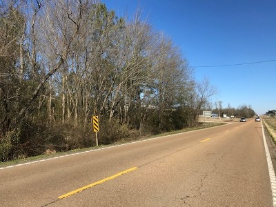 Scott County Commercial For Sale: Highway 35 South
