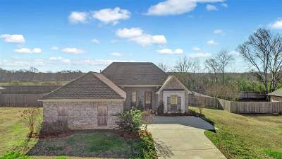 Canton Single Family Home For Sale: 151 Rhodes Ln