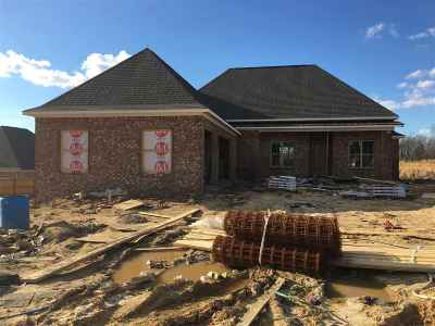 Hinds County Single Family Home For Sale: 104 Twain Trail