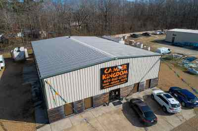 Rankin County Commercial For Sale: 4018 Highway 49