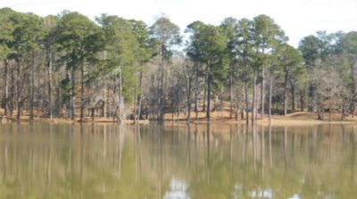 Clinton MS Residential Lots & Land For Sale: $1,500,000