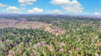 Rankin County Residential Lots & Land For Sale: Ben Chapman Rd