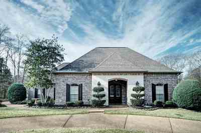 Brandon Single Family Home Contingent/Pending: 101 Faith Way
