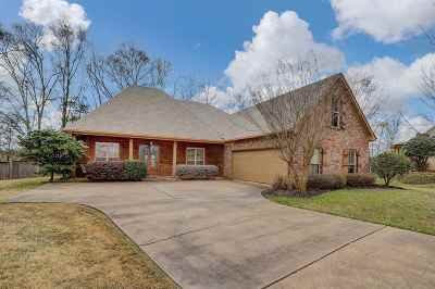 Canton Single Family Home For Sale: 108 Perry Cv