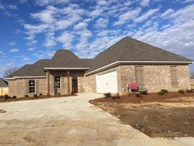 Canton Single Family Home For Sale: 117 Western Ridge Cr