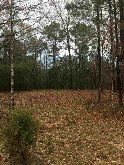 Smith County Residential Lots & Land For Sale: 251 Sylvarena Ave