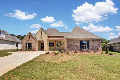 Flowood Single Family Home For Sale: 209 Duchess Ct