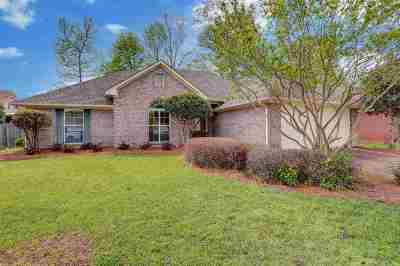 Brandon Single Family Home For Sale: 202 Old Town Ln