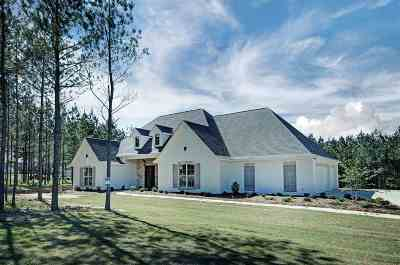 Brandon Single Family Home For Sale: 1101 Killian Ln