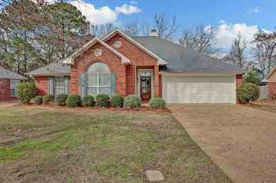 Madison Single Family Home Contingent/Pending: 579 Spring Hill Dr
