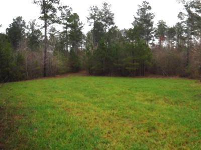 Brandon Residential Lots & Land For Sale: 1 Johns Shiloh Rd