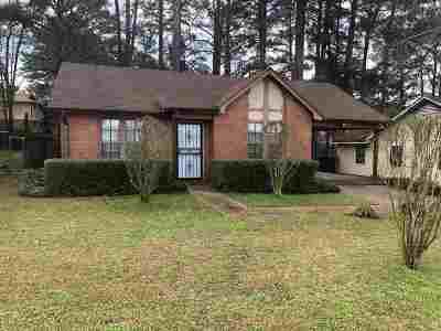 Hinds County Single Family Home For Sale: 1243 Anna Lisa Ln