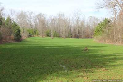 Leake County Residential Lots & Land For Sale: 385 Greenwood Chapel Rd