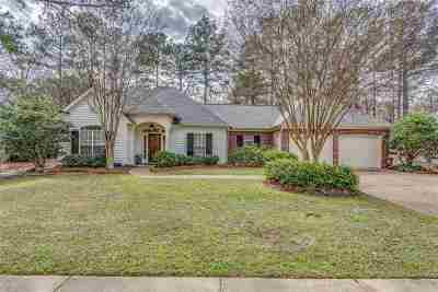 Ridgeland Single Family Home For Sale: 383 Pinewood Ln