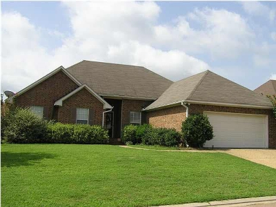 Pearl Single Family Home For Sale: 427 Wildberry Cir