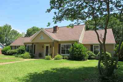 Brandon Single Family Home For Sale: 318 Mill Creek Dr