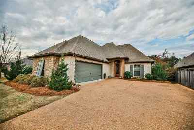 Brandon Single Family Home For Sale: 602 Bauxite Cove