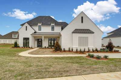 Madison Single Family Home Contingent/Pending: 325 Lake Village Dr