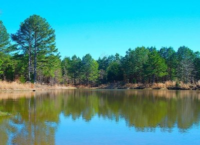 Canton Residential Lots & Land For Sale: 3279 Hwy 16 East