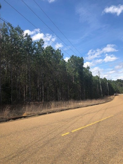 Rankin County Commercial For Sale: Concourse Dr