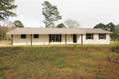 Brandon Single Family Home Contingent/Pending: 1028 Greenfield Cir