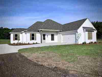 Brandon Single Family Home For Sale: 3985 Hwy 471