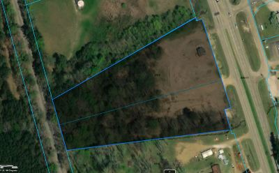 Residential Lots & Land For Sale: 2093 Hwy 49