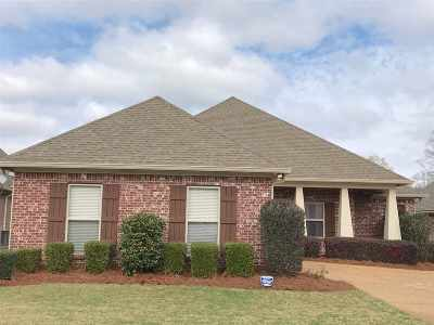 Single Family Home Contingent/Pending: 423 Providence Dr