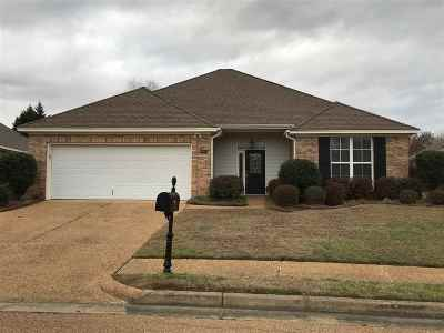 Single Family Home Contingent/Pending: 221 Terrace Dr