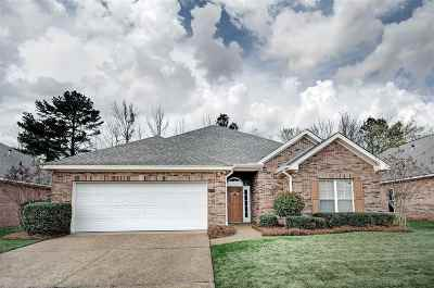 Single Family Home Contingent/Pending: 258 Terrace Dr