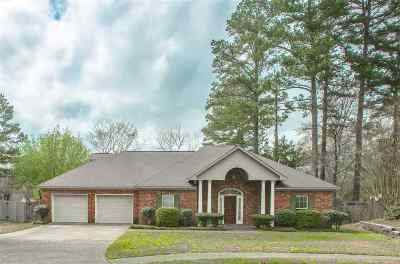 Ridgeland Single Family Home For Sale: 301 Beech Cv