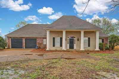 Madison MS Single Family Home For Sale: $285,000
